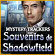 fr_mystery-trackers-memories-of-shadowfield
